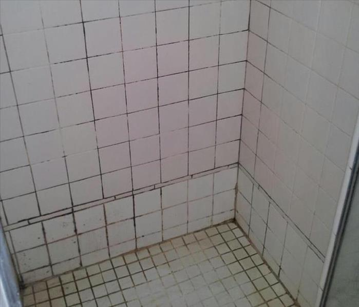 Tile and Grout Surfaces Before